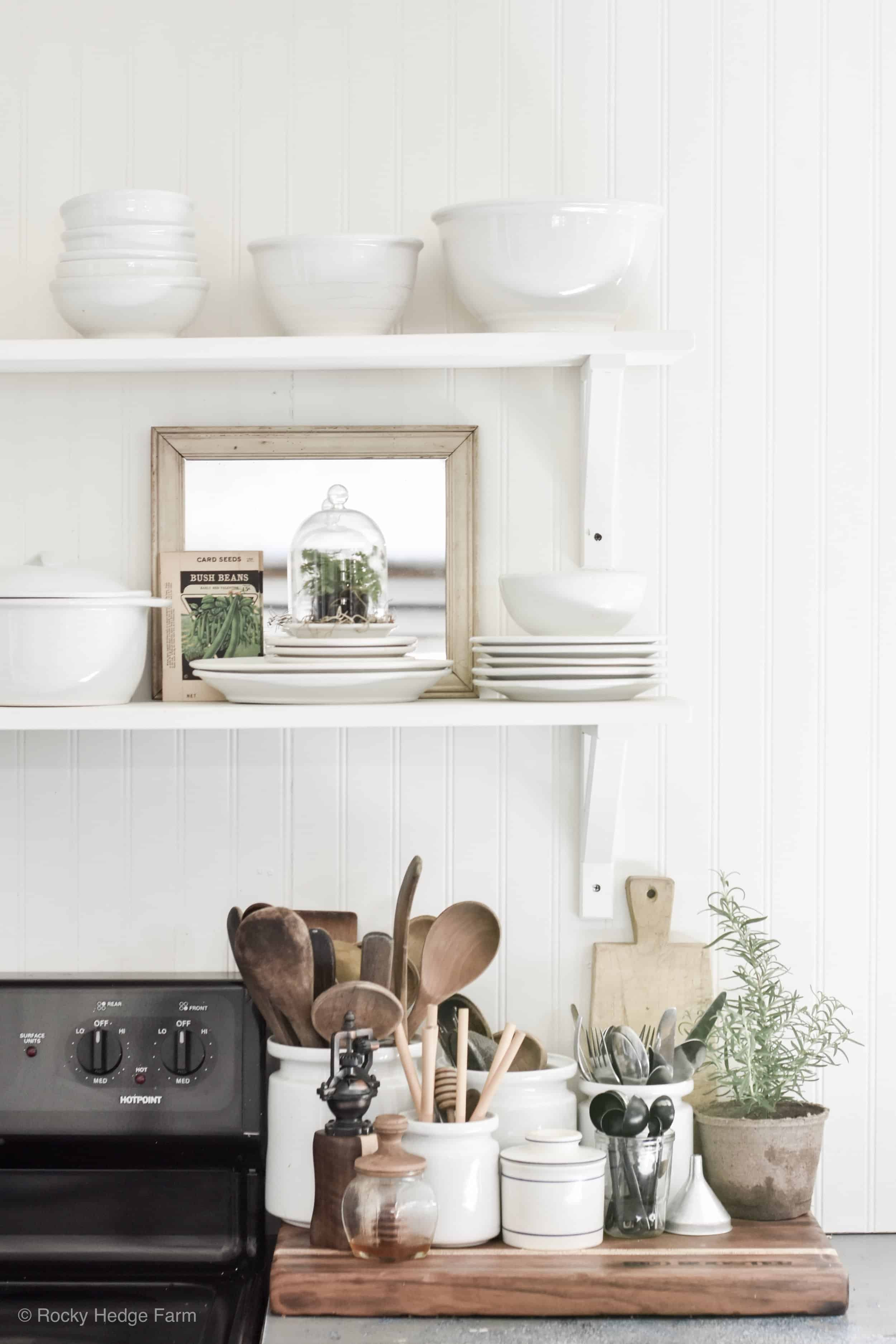 Plants For Kitchen To Decorate It: Growing Plants Under A Cloche