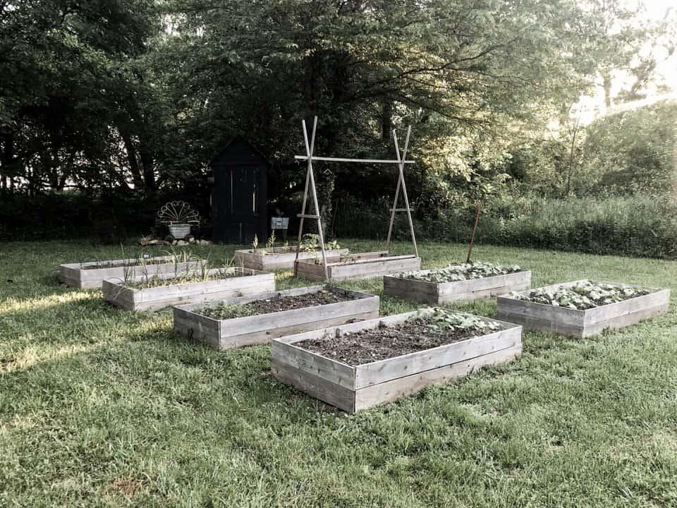 Rocky Hedge Farm